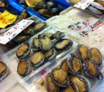 uni (sea urchins)